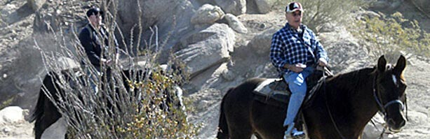 Petroglyph Trail Ride